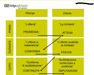 TripAdvisor-Hotel-Web-Reputation
